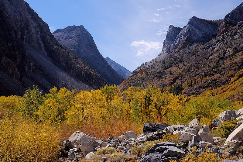The fall colors come thick and fast in Convict Canyon. You can just see Red Slate Mountain in the distance, which stands as one of the sentinels over the basin holding Dorothy and Mildred Lakes.