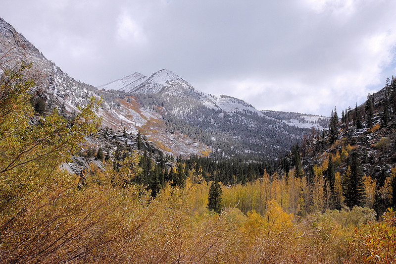 The storm has dusted the mountains with snow, which adds another layer of complexity to the landscape. This is once again back on the South Lake Road near Willow Campground looking upcanyon.