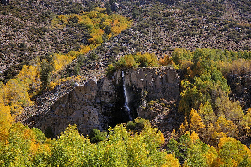 Mist Falls, in the south fork Bishop Creek Canyon on the road to South Lake, is also a favorite of photographers. However, there's a house just off to the left of this photo that somewhat spoils the effect, as without it the scene would be even more impressive. With the surrounding trees looking the way they do, however, I wasn't one to complain, and I think they make a nice frame for the wispy falls.