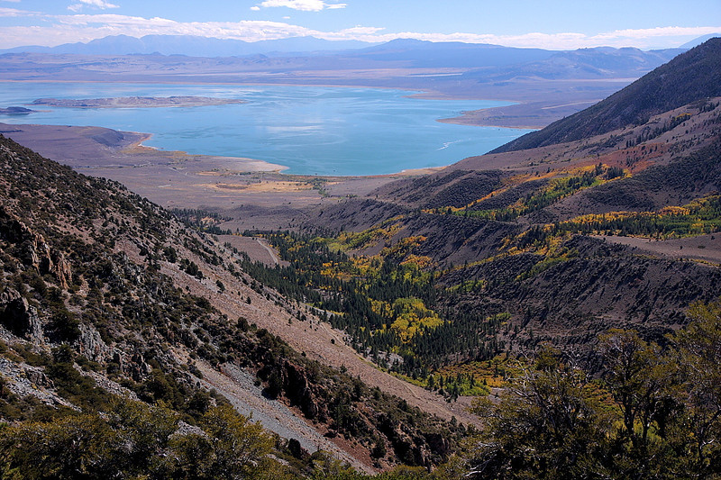 The road circles around Copper Mountain, and the southern section overlooks Lundy Canyon. Here's the view looking east, with Mono Lake and, in the distance, the White Mountains. Splashes of autumn are everywhere...