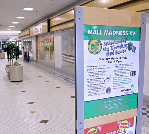 Girl Scouts Mall Madness at Enfield Square 3-11-17