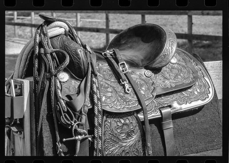 Ummm, a saddle