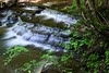 Buttermilk falls 051715 14 DSC_5544