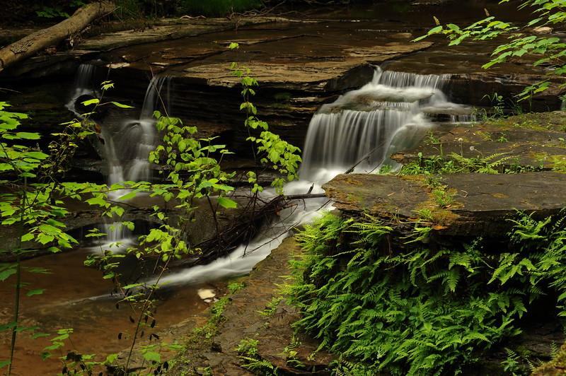 Buttermilk Falls 9 DSC_3504
