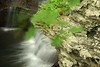 Buttermilk Falls 18 DSC_3519