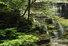 Buttermilk Falls 39 DSC_3557