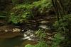 Buttermilk Falls 7 DSC_3499