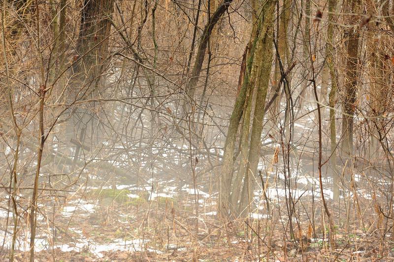 Buttermilk Falls Leroy 010111 38 DSC_4241