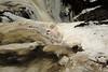 Buttermilk Falls Leroy 010111 21 DSC_4213