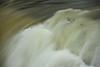Buttermilk Falls Leroy 010111 69 DSC_4297