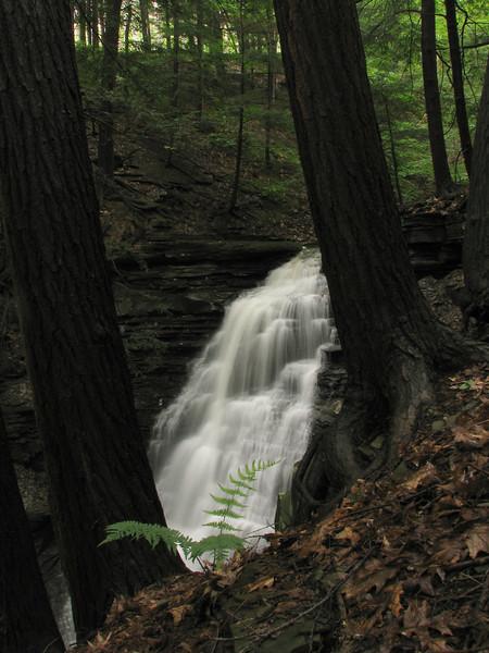 Anastasia Falls #1, Canadice NY.