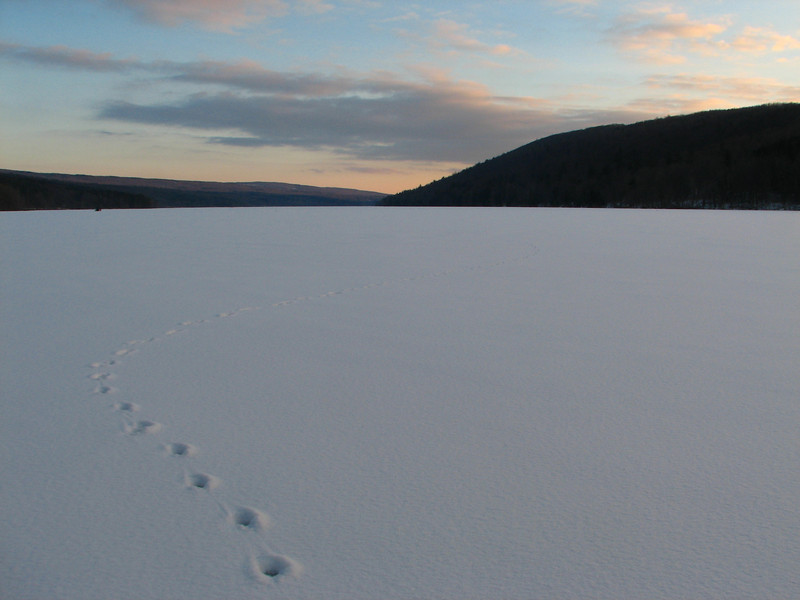 Footprints on frozen lake, Canadice Lake NY.