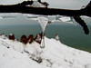 Ice storm, Chimney Bluffs NY.