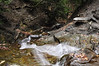 Conklin Gully 113009 36_DSC0088