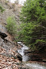 Conklin Gully 113009 24_DSC0057