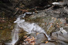 Conklin Gully 113009 40_DSC0095