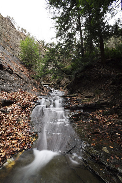 Conklin Gully 113009 28_DSC0068