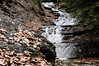Conklin Gully 113009 23_DSC0056
