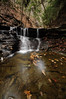 Conklin Gully 113009 9_DSC0025