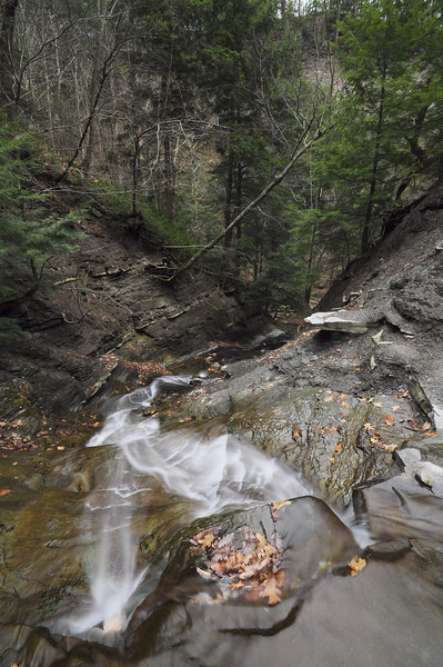 Conklin Gully 113009 45_DSC0103