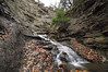 Conklin Gully 113009 31_DSC0077