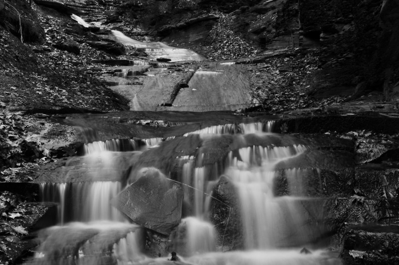 Conklin Gully 113009 52_DSC0120