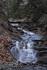 Conklin Gully 113009 54_DSC0127