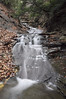 Conklin Gully 113009 26_DSC0063