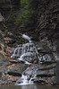Conklin Gully 113009 49_DSC0110