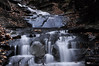 Conklin Gully 113009 51_DSC0118