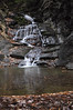 Conklin Gully 113009 48_DSC0109