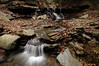 Conklin Gully 113009 10_DSC0027