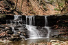 Conklin Gully 113009 4_DSC0008
