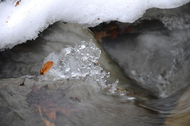 Winter stream #3, Conklin Gully NY.