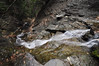 Conklin Gully 113009 44_DSC0102