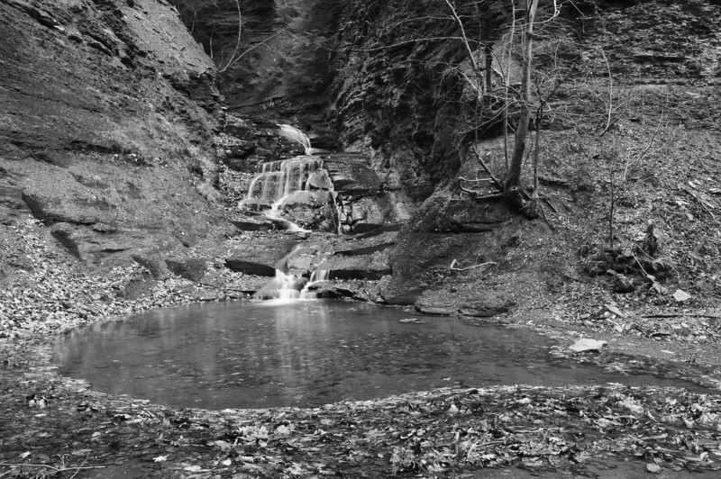 Conklin Gully 113009 46_DSC0106
