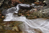 Conklin Gully 113009 38_DSC0092