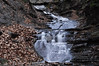 Conklin Gully 113009 53_DSC0124