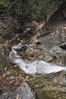 Conklin Gully 113009 42_DSC0099