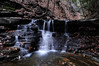 Conklin Gully 113009 56_DSC0134