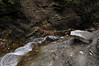 Conklin Gully 113009 35_DSC0087
