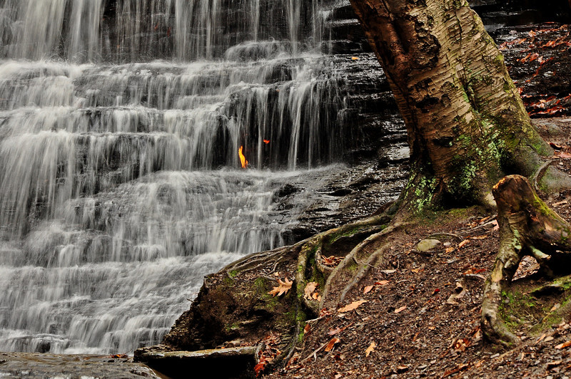 Eternal Flame Falls 111611 56-ok one last look DSC_1043