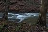 Grimes Glen 112411 32 DSC_6404