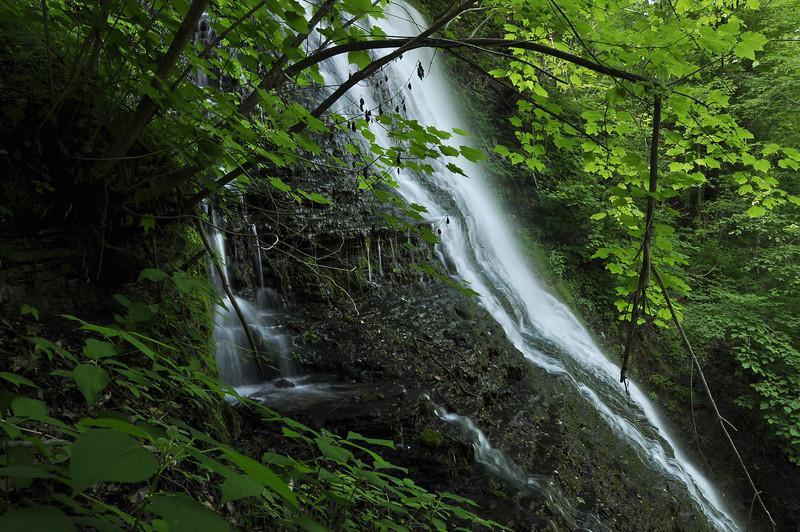 Grimes Glen 061509 41-first falls from side_DSC8897
