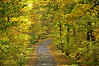 Letchworth 101109 31_DSC5653