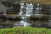 Letchworth 041512 38 DSC_9930