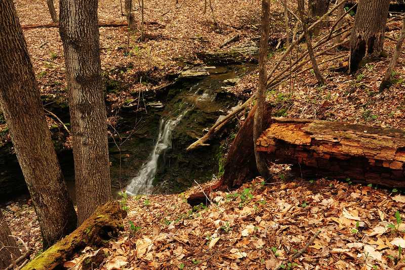 Lick Brook 050111 55-another creek DSC_8860