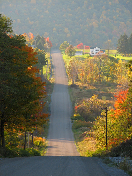 Country road in autumn mist, Springwater NY.