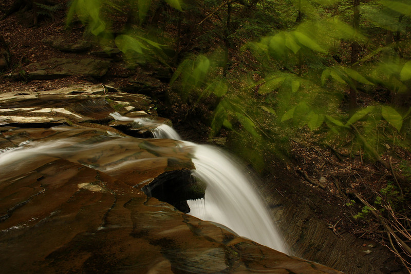 Waterfall's edge and moving leaves. Reynold's Gully. Springwater NY.