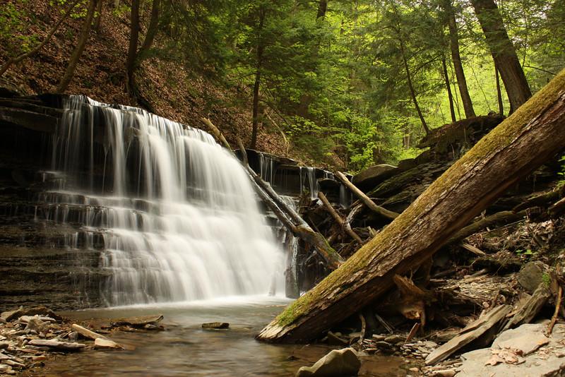 M'Lady Falls #1, Reynolds Gully, Springwater NY.